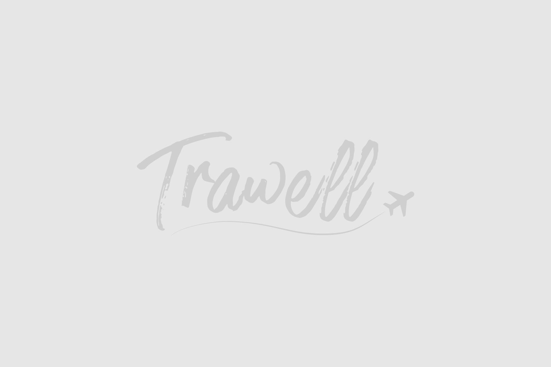 London Transport – unusual travel options
